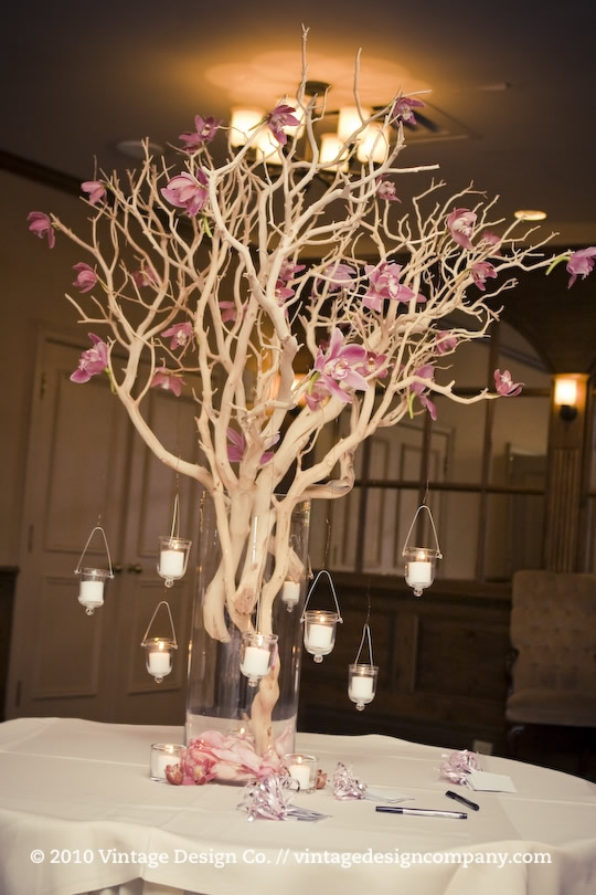 Vintage Design Co. // Manzanita Wishing Tree