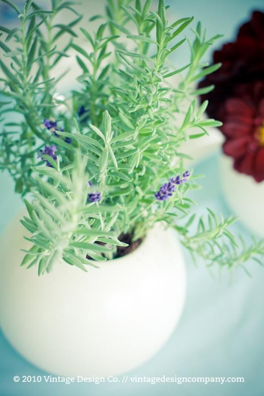 Niagara on the Lake Wedding Florist // Dahlias and Lavender Tablescapes 5