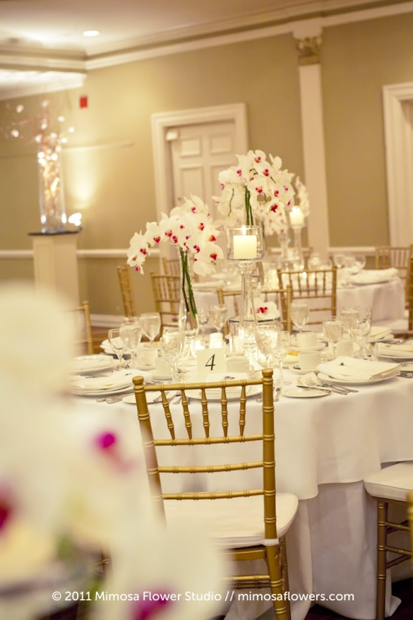 White and Pink Phalaenopsis Orchid in Wedding Centerpiece 2