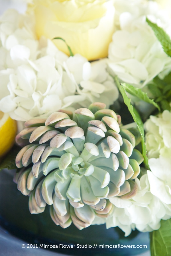 Succulent in wedding centerpiece