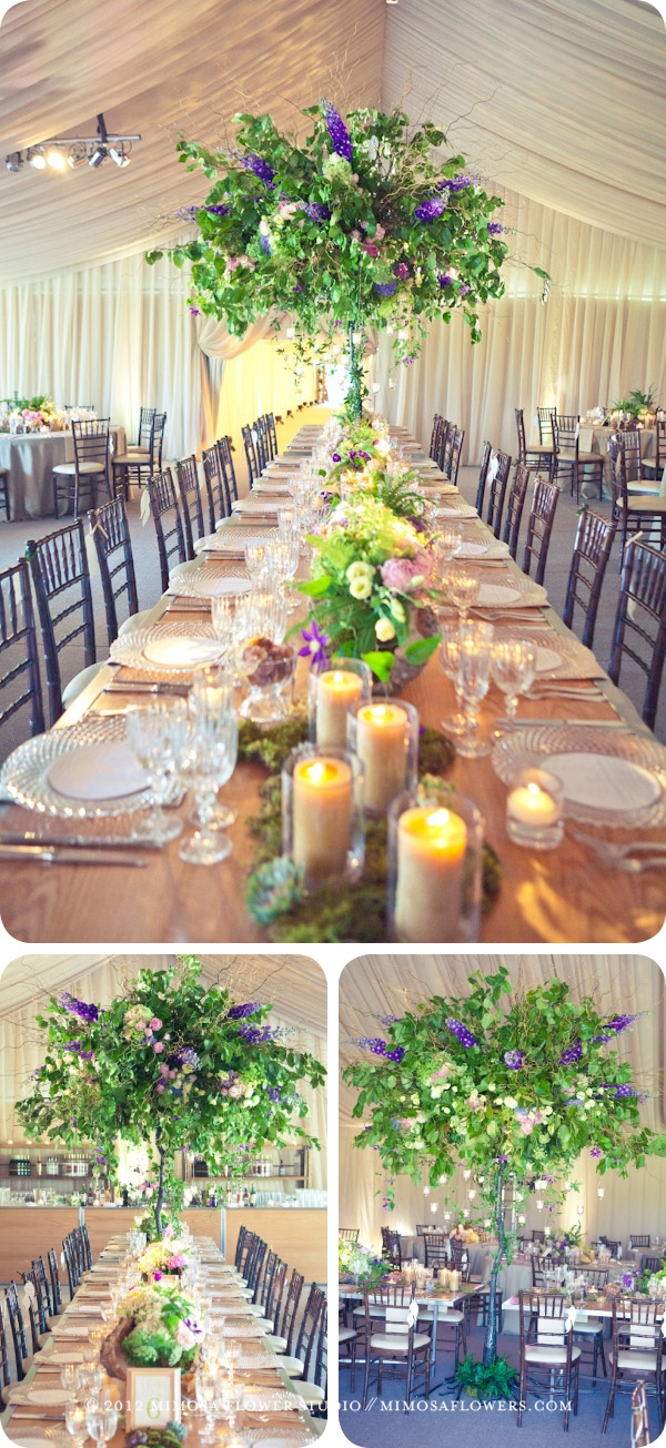 Private Wedding Reception at Blue Mountain - Tall Trees