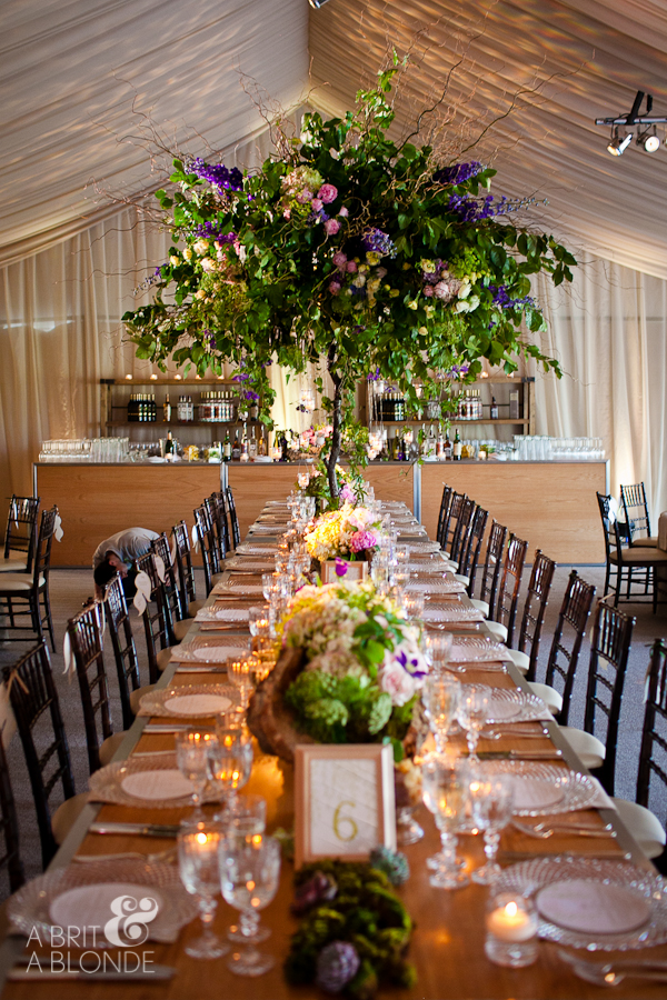 Outdoor wedding reception in giant tent with giant tree