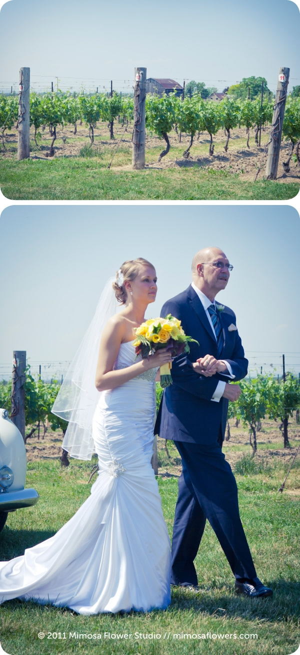 Cave Spring Vineyard Wedding / Inn on the Twenty