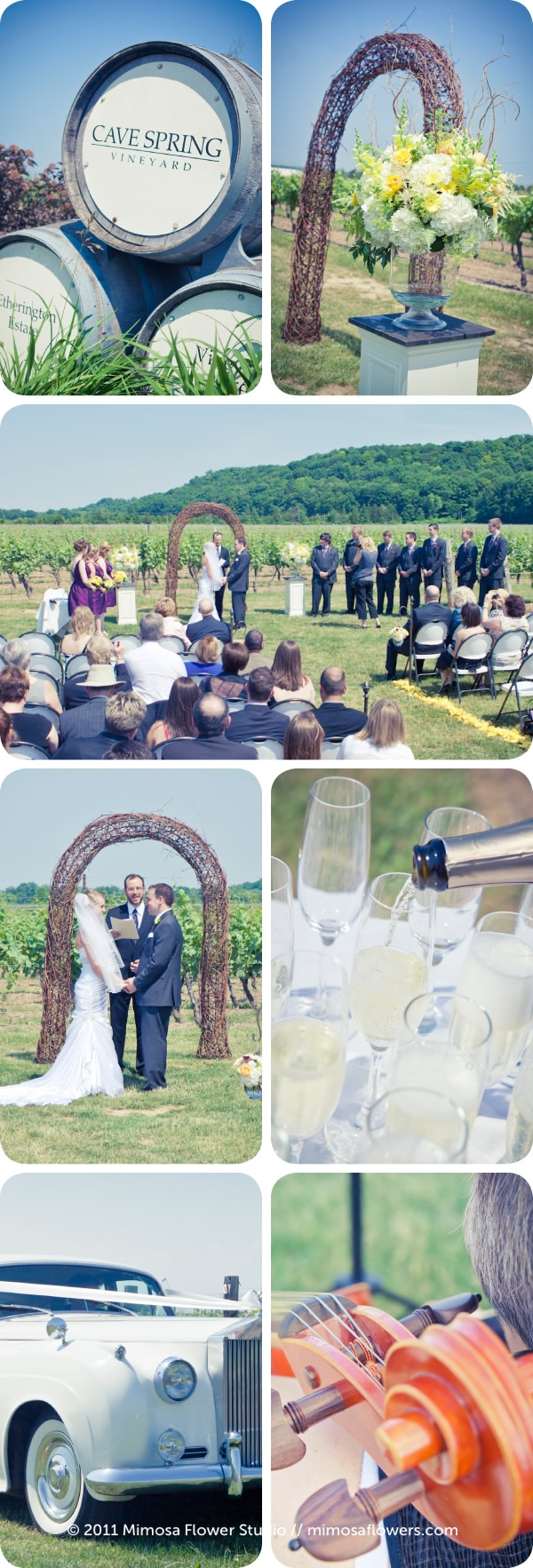 Cave Spring Vineyard Wedding / Inn on the Twenty 2