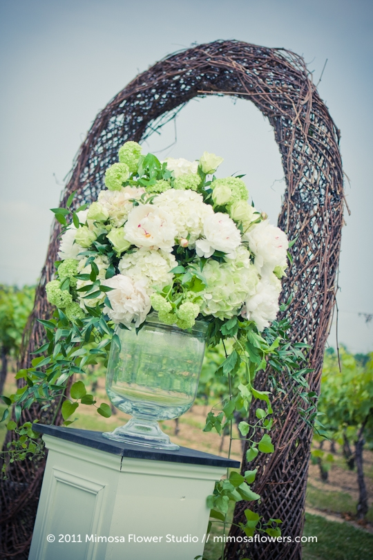 Winery Vineyard Wedding Ceremony with Grapevine Arbour